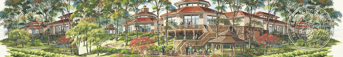 Picture of artist's rendering of Mitas Hill facilities.